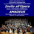 """La Fondazione Comunitaria del Varesotto Onlus organizza """"Invito all'Opera""""  che si terrà venerdì 5 ottobre alle ore 21.00 presso il Teatro Sociale di Busto Arsizio. Suona l'Orchestra sinfonica """"Amadeus""""."""