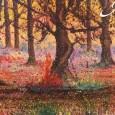 Tra metropoli e natura, mostra personale di Alessia Rodari, si inaugura mercoledì 11 settembre ore 21.00 alla Chiesa dei Santi Cosma e Damiano di via San Giorgio a Schianno (VA). La mostra Da qualche anno...