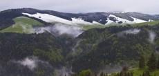 La sezione Club Alpino Italiano di Vedano Olona, con il patrocinio del comune di Vedano Olona e il sostegno di Villa Cagnola di Gazzada, nel centenario della Grande Guerra, organizza un incontro pubblico con Gianni...