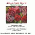 """Silvana Angela Ferrario esporrà la sua mostra personale """"Hortus Conclusus"""" alla galleria Oriana Fallaci di Somma Lombardo dal 18 al 26 aprile. L'inaugurazione si terrà sabato 18 aprile alle ore 18."""