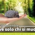 """Venerdì 20 novembre dalle ore 16 alle 18, presso il Salone Estense di Varese in via Sacco 5, è in programma """"Biodiversi-chè? Comunicare l'ambiente nell'epoca dell'iper-informazione"""" nell'ambito di Vive solo chi si muove, evento conclusivo del Progetto Life Tib (Trans Insubria Bionet) e di Glocal, Festival del giornalismo digitale, un interessante  incontro con numerosi esperti di comunicazione e scienza."""