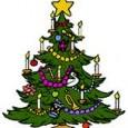 Domenica 25 novembre, presso l'Azienda Agricola I Mirtilli di Bregazzana, si terrà la festa dell'Albero di Natale: adotta un albero e segui la sua crescita.