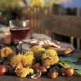 """""""San Marten Castagni e Ven"""": domenica 11 novembre presso Villa Meli Lupi di Vigatto (Parma). Vino novello, passeggiate in carrozza, mercatini di Natale. In caso di maltempo, l'evento si terrà nei locali della Villa."""