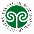 Mercoledì 30 Gennaio, dalle ore 9.00 alle 13.00, presso l'Aula Magna dell'Università dell'Insubria, via Ravasi 3, Varese, si terrà un seminario sulla fotografia. I relatori saranno: Maria Grazia D'Amico, Sandro Iovine e Bruno Taddei.