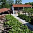 Vi segnaliamo i prossimi eventi relativi a natura, sport e creatività proposti dal Centro Parco Ex Dogana Austroungarica in località Tornavento di Lonate Pozzolo.