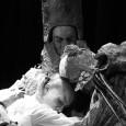 Domenica 10 gennaio, alle ore 16,presso il Teatro Conforti, Piazzale Volta - PARMA (C/O Parrocchia del Sacro Cuore) ,tornerà in scena il titolo che la scorsa stagione ha fatto il sold out in ogni replica : Il Bosco Infiocchettato.