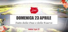 La riserva naturale Palude Brabbia della LIPU (Lega Italiana Protezione Uccelli) di Cazzago Brabbia (Varese) organizza una serie di proposte di visite guidate e laboratori,a partire da domenica 23 aprile. In questa giornata, dalle ore […]
