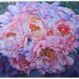 Fino a domenica 20 maggio presso la sala Oriana Fallaci di Somma Lombardo, sarà possibile visitare la mostra di Pittura di Silvana Angela Ferrario. La mostra, inaugurata il 12 maggio, è aperta tutti i […]