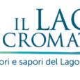 Martedì 29 Maggio 2018 alle ore 11.00 presso la sede della Fondazione Comunitaria del Varesotto , l'Associazione Musica Libera presenterà la IV edizione del Festival Il Lago Cromatico. Interverranno il Presidente dell'Ass. Musica Libera Dott.ssa […]