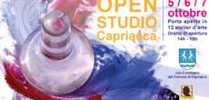 Sarà inaugurata giovedì 4 ottobre, alle 18.30, presso il Municipio di Tesserete, la terza edizione di OpenStudio Capriasca, l'iniziativa che permetterà al pubblico di varcare la soglia dei tanti atelier d'arte che animano la […]