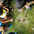 Da domenica 4 ottobre proseguono gli eventi organizzati dalla LIPU alla Riserva naturale della Palude Brabbia a Inarzo (VA). Due gli eventi in programma nella giornata: Ore 9.00: birdwatching in bici sul lago Una biciclettata […]